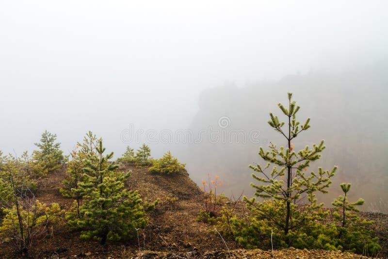 Zadziwiający Straszny zima krajobraz obrazy stock