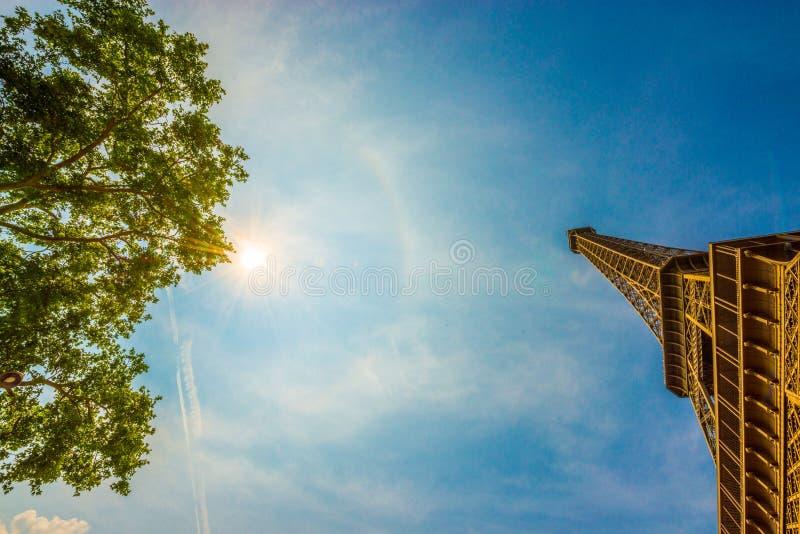 Zadziwiający szeroki kąta strzał wierzchołek Eifel wierza z drzewem przeciw pełnemu colourful lata słońcu obraz royalty free