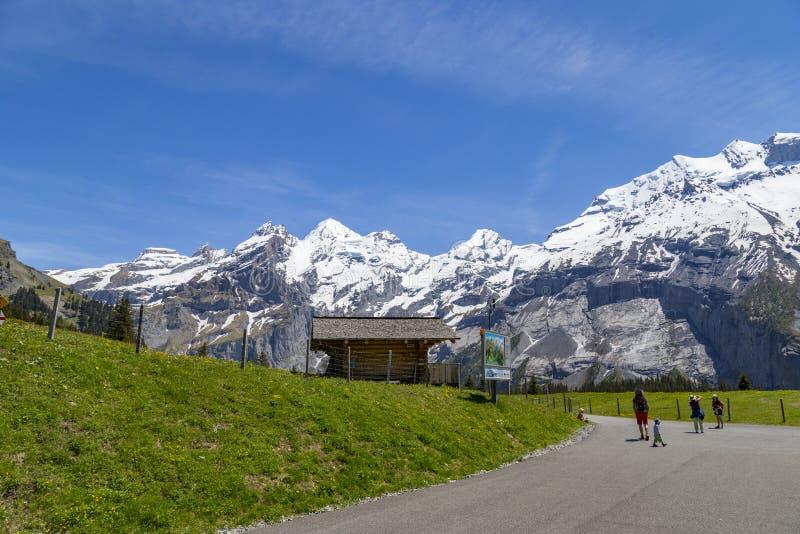 Zadziwiający widok Szwajcarscy Alps i łąki blisko Oeschinensee na Bernese Oberland, Szwajcaria (Oeschinen jezioro) fotografia stock