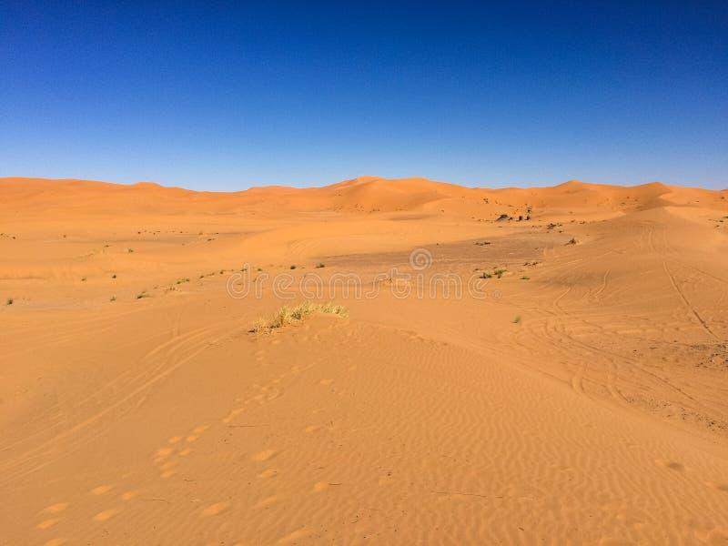 Zadziwiający widok wielkie piasek diuny w saharze, erg Chebbi, Merzouga, Maroko fotografia royalty free