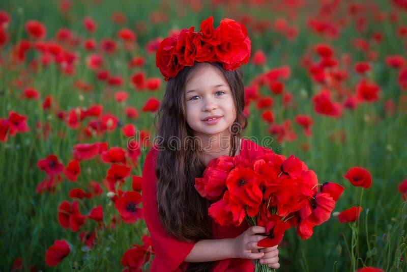 Zadziwiający zakończenie w górę portreta urocza śliczna młoda romantyczna dziewczyna z makowym kwiatem w ręce pozuje na śródpolny obrazy stock