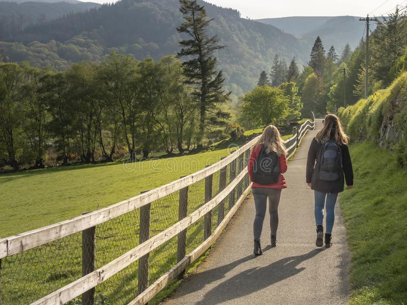 Zadziwiający zieleni Irlandzcy obszary trawiaści w Wicklow górach zdjęcie stock