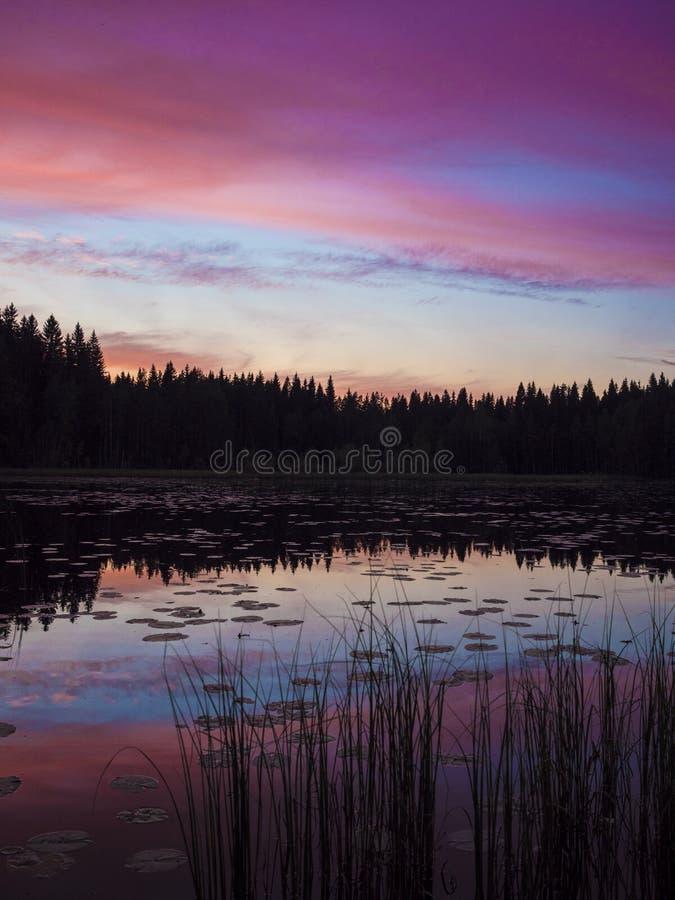 Zadziwiający zmierzchu widok - Lusi, Finlandia fotografia stock