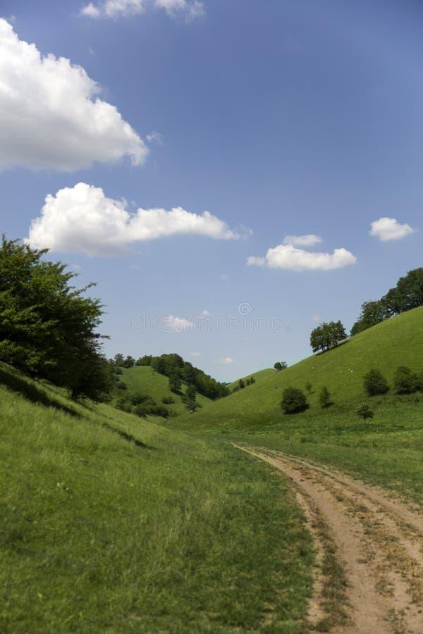 Zagajica wzgórza w Serbia fotografia royalty free