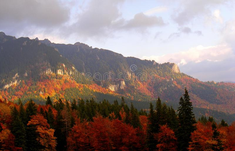 Zaganu Summit form Ciucas Carpathian Mountains in the autumn. Landscape foliage cliff alpine altitude climb climber highland adventure steep rocks forest stock image