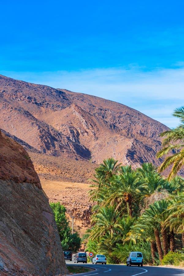 Zagora, Marocko - 12 november 2019: Bergslandskap Draa valley oasis Lodrät royaltyfri fotografi