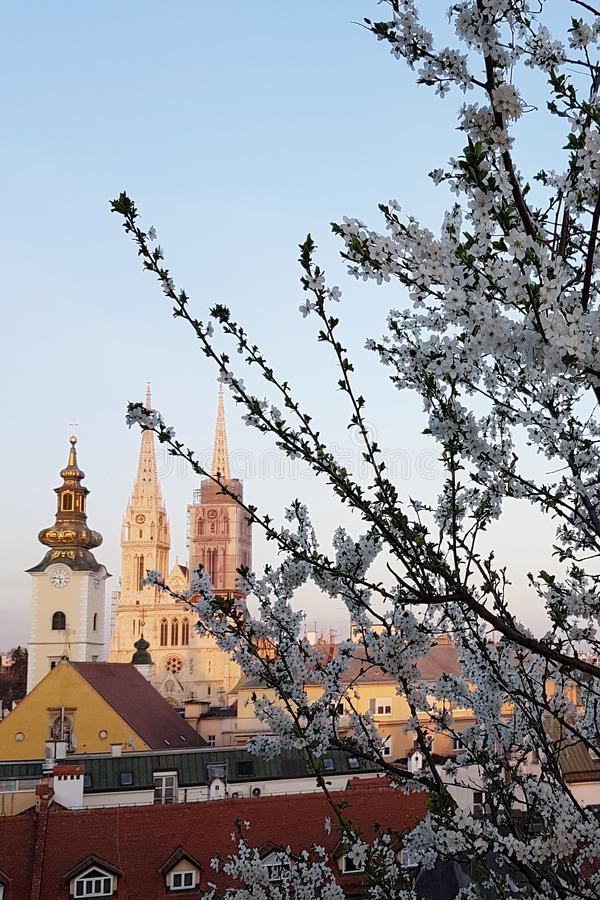 Zagreb cathedral in spring royalty free stock photography