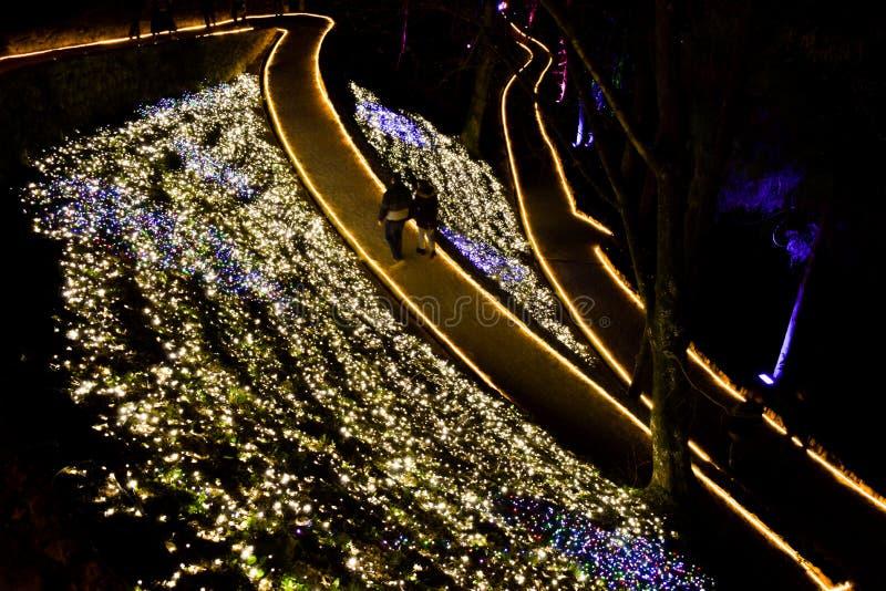 Zagreb, Croácia - 21 de março de 2019: Pares que andam através do parque iluminado fotos de stock