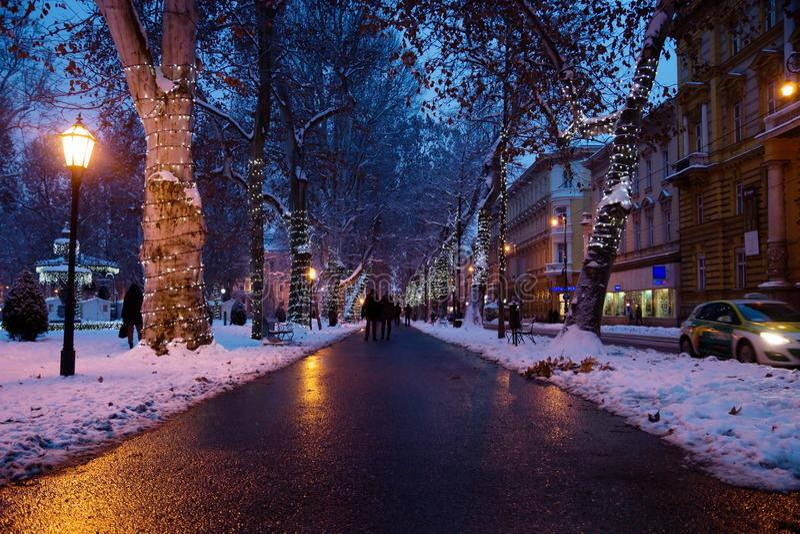 Zagreb, Croatie : Le 6 janvier 2016 : Sentier piéton avec les arbres décorés en parc de Zrinjevac à Zagreb la nuit en hiver avec  photo libre de droits