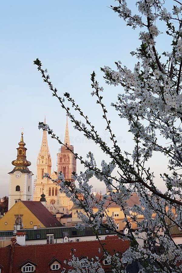 Zagreb-Kathedrale im Frühjahr lizenzfreie stockfotografie