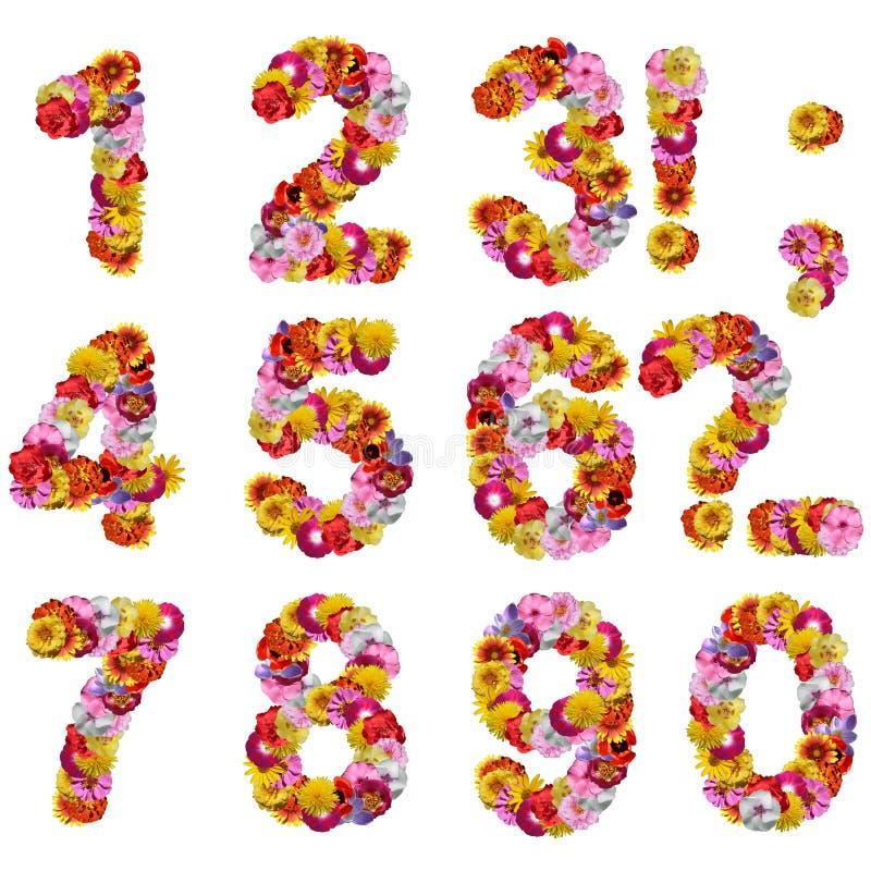 Zahlen der Blumen lizenzfreies stockbild