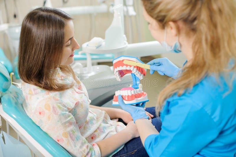 Zahnarzt, der dem Patienten zahnmedizinisches Kiefermodell im dentist& x27 zeigt; s-Klinik stockbild