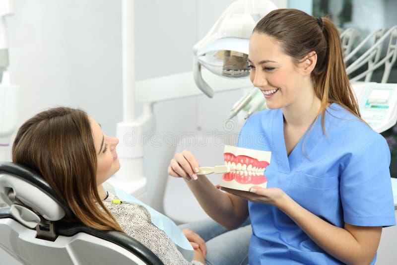 Zahnarzt, der wie man Zähne erklärt, putzt stockbild