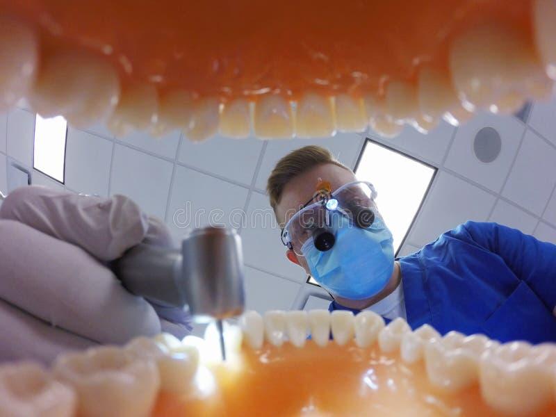 Zahnarzt mit den Schleifen, die Zähne bohren lizenzfreies stockfoto