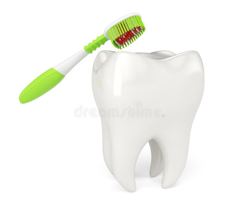 Zahnbürste und Zahn lizenzfreie abbildung