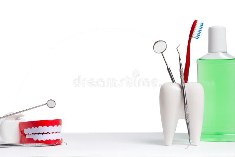 Zahngesundheits- und teethcarekonzept Zahnmedizinischer Spiegel mit Forschersonde und Zahnb?rste im wei?en Zahnmodell nahe Mundwa lizenzfreie stockfotografie