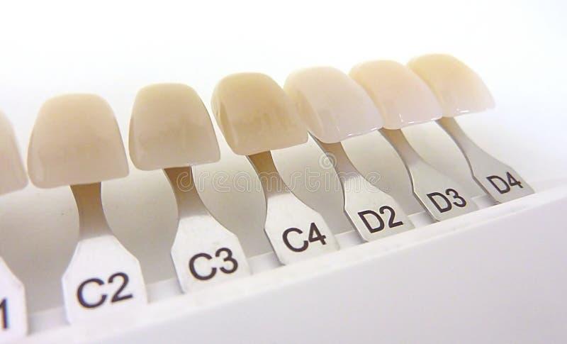 Zahnmedizinische Farbtonanleitung lizenzfreie stockfotos
