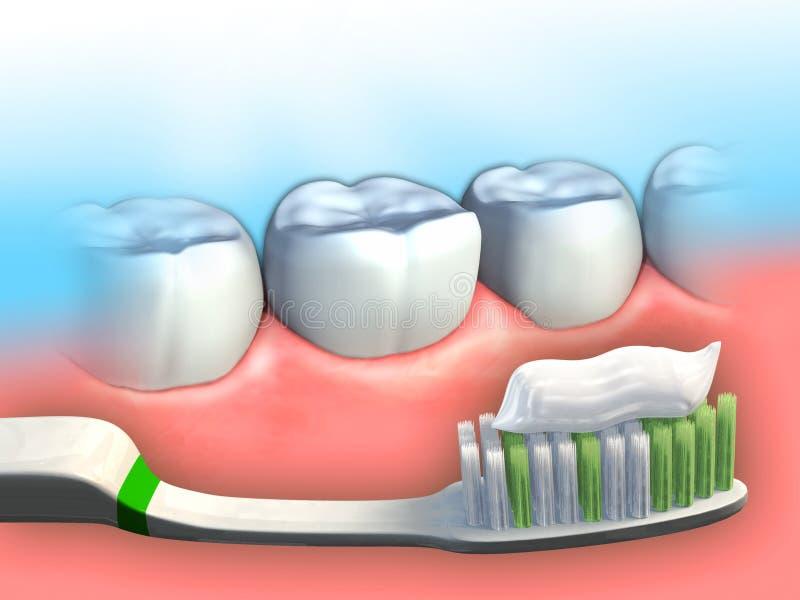 Zahnmedizinische Hygiene vektor abbildung