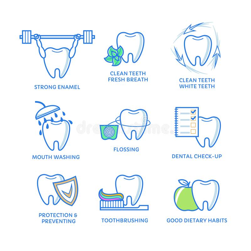 Zahnmedizinische Ikonen Zahn mit Glasschlacke, Minze, Mundwasser, Bürste, Apfel, lokalisiert auf Weiß vektor abbildung