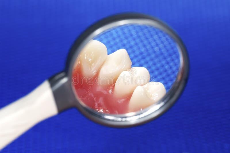 Zahnmedizinische Prüfung lizenzfreie stockfotos