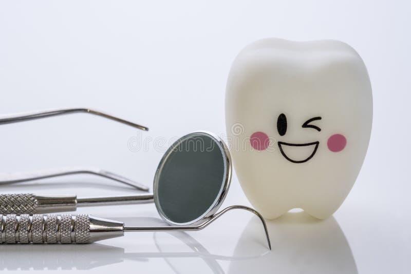 Zahnmedizinische Werkzeuge und L?chelnz?hne modellieren stockfoto