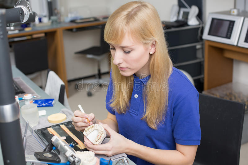 Zahnmedizinischer Labortechniker, der Porzellan an der Gebissform anwendet lizenzfreies stockbild