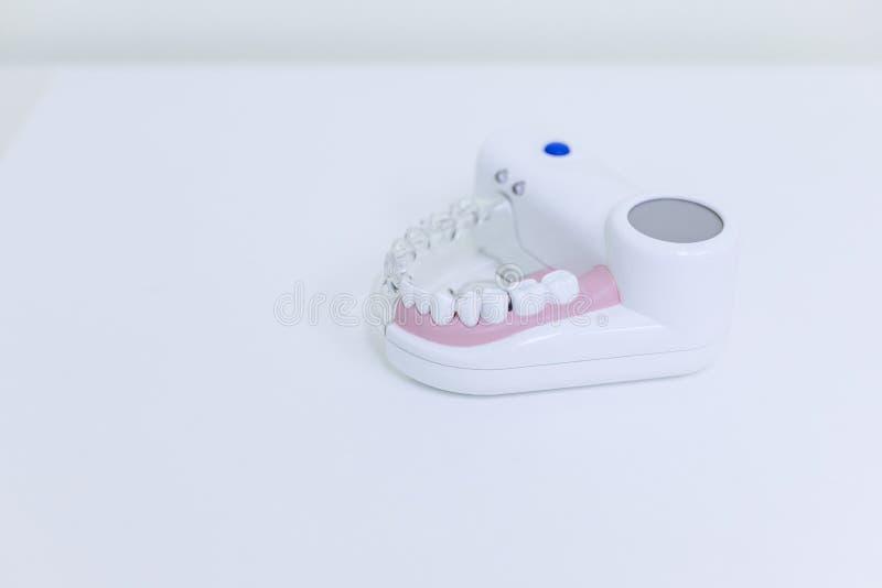 Zahnmedizinischer Zahnzahnheilkundestudent, der das unterrichtende Modell zeigt Zähne, Wurzeln, Zahnfleisch, Zahnfleischerkrankun stockbilder