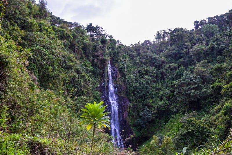 Zaina Waterfall in Aberdare Ranges, Kenya. Zaina Waterfall in Chania Nyeri, Aberdare Ranges, Kenya royalty free stock photography