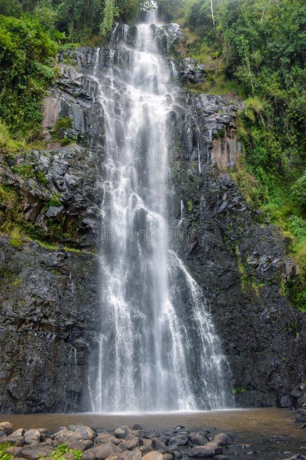 Zaina Waterfall in Aberdare Ranges, Kenya. Zaina Waterfall in Chania Nyeri, Aberdare Ranges, Kenya royalty free stock image