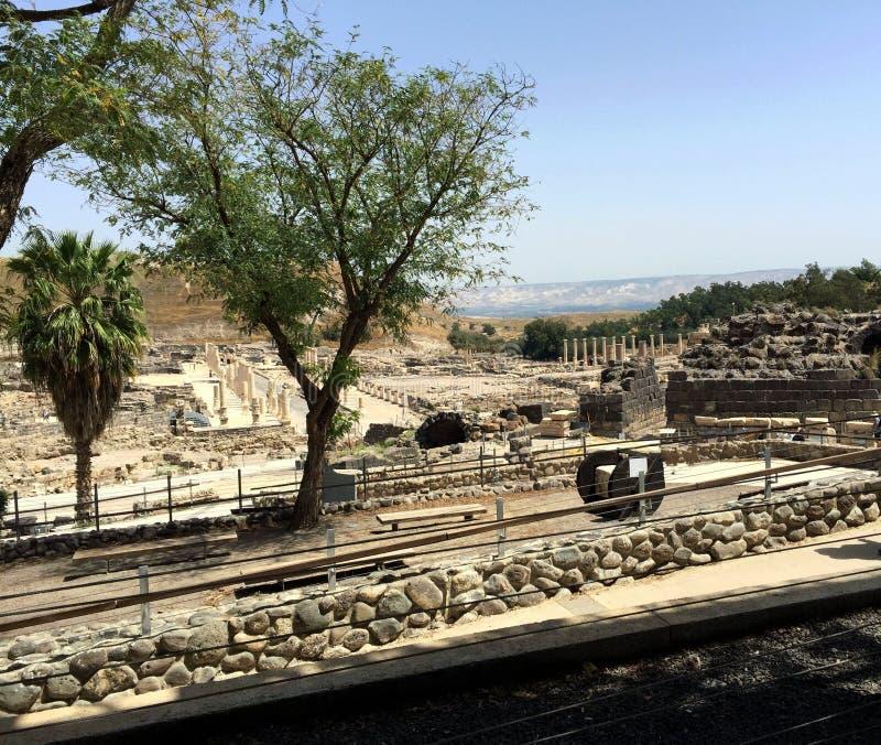 zakładu Israel park narodowy shean zdjęcia stock