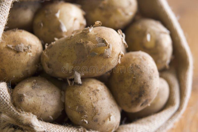 Zak van de Koninklijke Aardappels van Jersey royalty-vrije stock foto