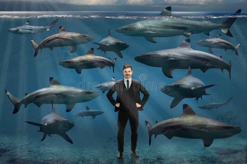 Zakenman die door haaien wordt omringd stock afbeeldingen