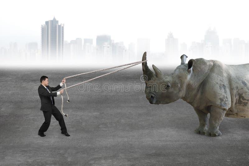 Zakenman die kabel trekken tegen rinoceros op concrete vloer royalty-vrije stock afbeeldingen