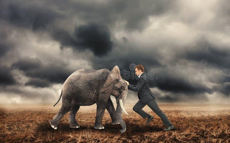 Zakenman die met een olifant duwen royalty-vrije stock afbeelding
