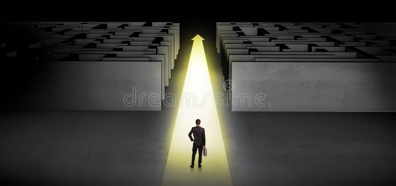 Zakenman die rechtstreeks tussen twee labyrinten doorgaan royalty-vrije illustratie