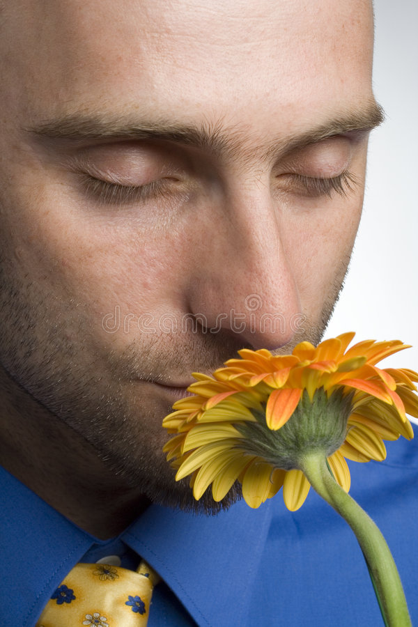 Zakenman met bloem royalty-vrije stock foto's
