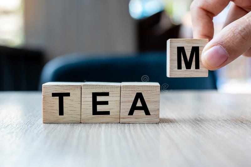 Zakenmanhand die houten kubusblok met TEAM bedrijfswoord op lijstachtergrond houden Samenwerking, samen, zaken en stock afbeelding