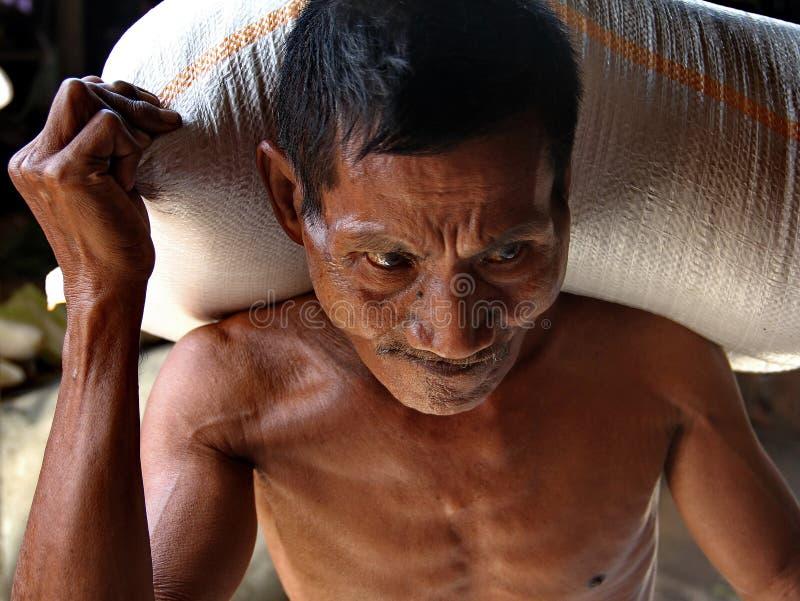 Zakken van de mensen de dragende rijst stock afbeeldingen