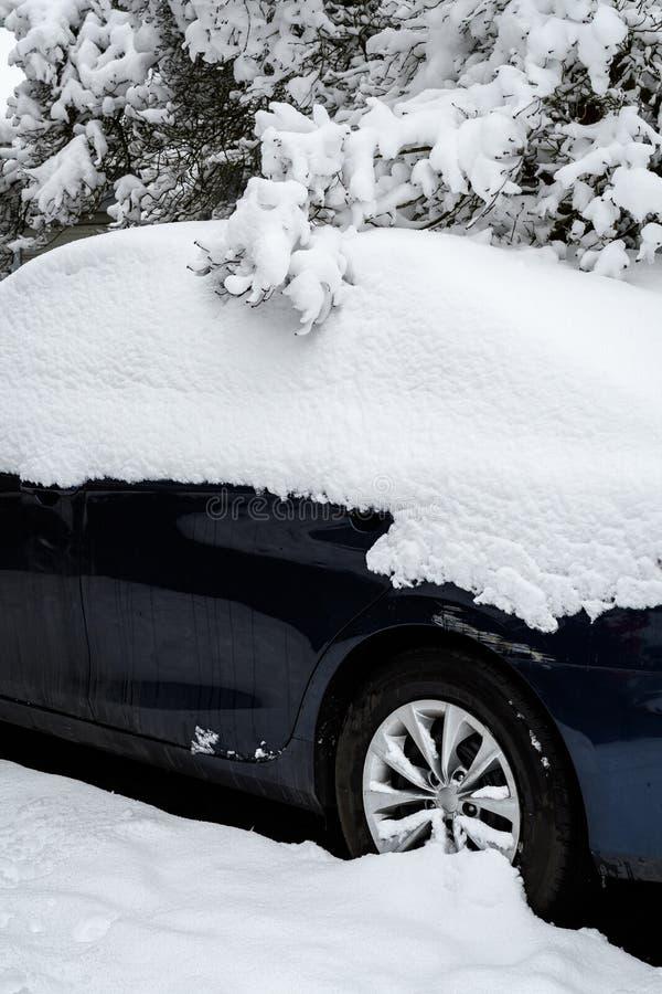 Zakończenie w górę śniegu zakrywał zmrok - błękitny samochód z śnieg zakrywać gałąź fotografia stock