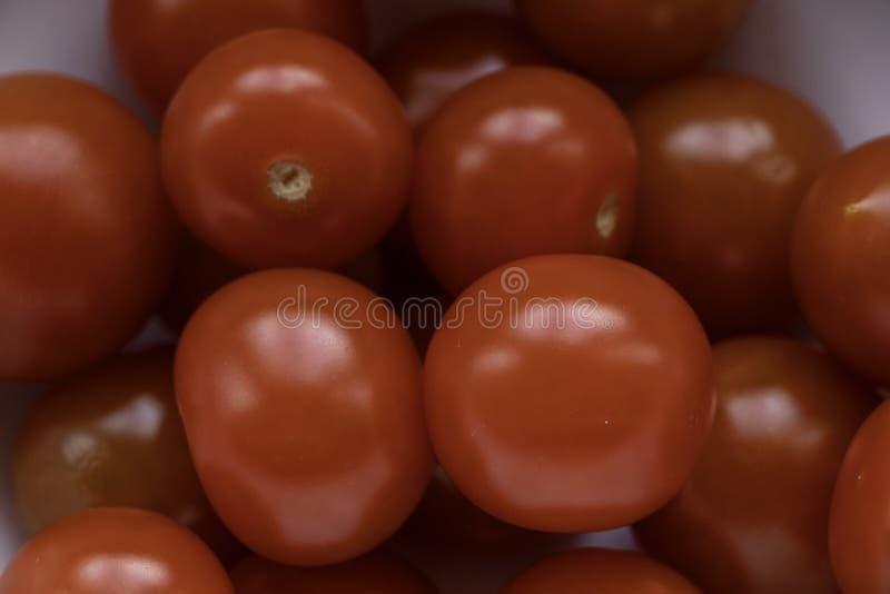 Zakończenie w górę pucharu biali pomidory dalej fotografia stock