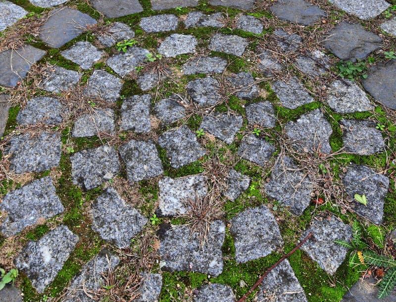 Zakończenie w górę widoku inne perspektywy na brukowiec ziemi powierzchniach brać na północnych Germany ulicach obraz stock