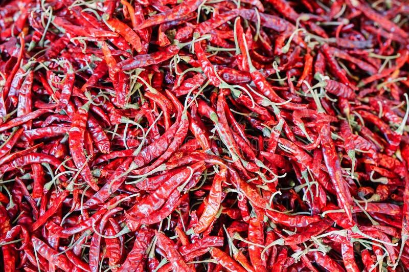 Zakończenia świeży czerwony chili zdjęcia stock