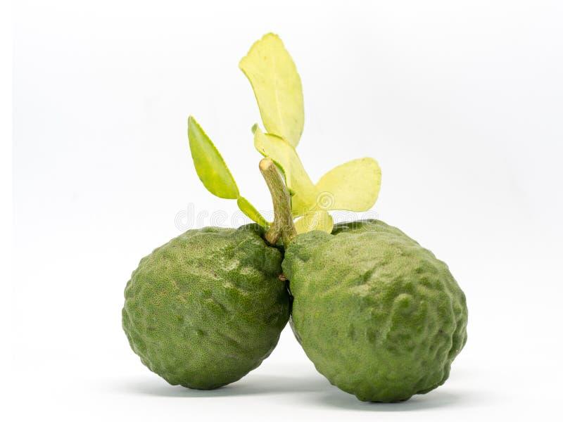Zakończenia up grupa świeża bergamota z zieleń liśćmi odizolowywającymi na białym tle korzyści bergamota dla piękna i zdrowie obrazy stock