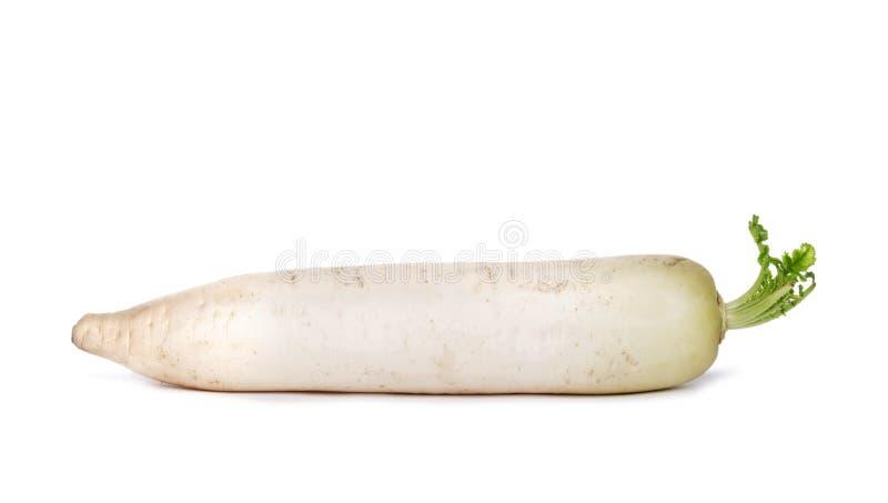 Zakończenie biała rzepa odizolowywająca na białym tle, lat odżywczy warzywa dla zdrowych diet fotografia stock