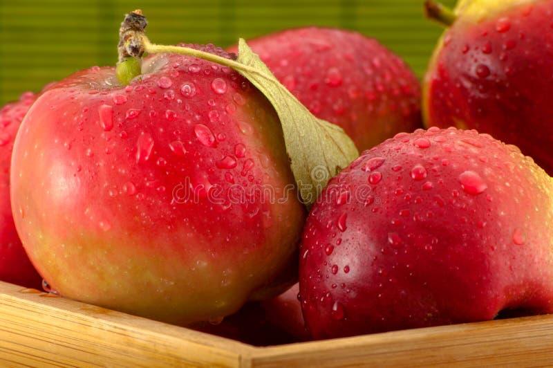 Zakończenie fotografia mokrzy jabłka z wodnymi kroplami w małej bambusowej skrzynce na zamazanym zielonym tle fotografia royalty free
