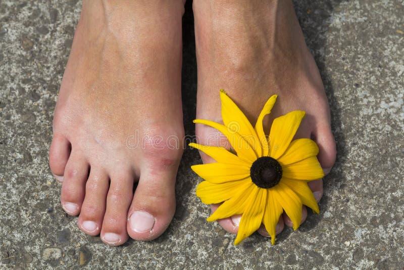 Zakończenie kobieta cieki z kwiatem między palec u nogi obraz stock