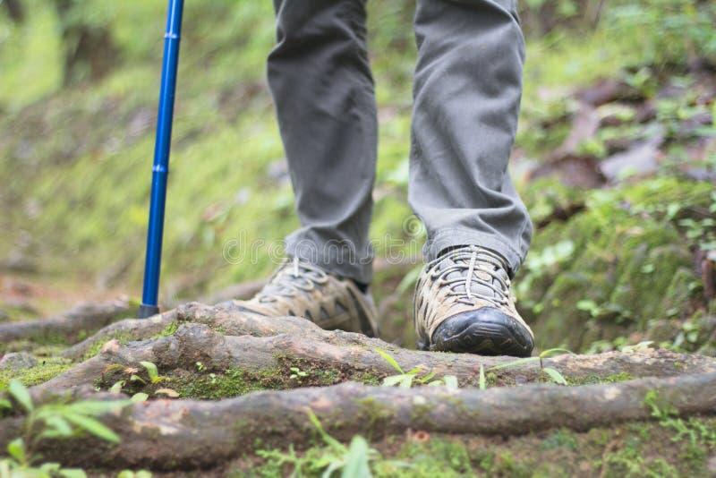 Zakończenie mężczyzna wycieczkowiczy buty Mężczyzna chodzi wzdłuż ścieżki w wo zdjęcie royalty free