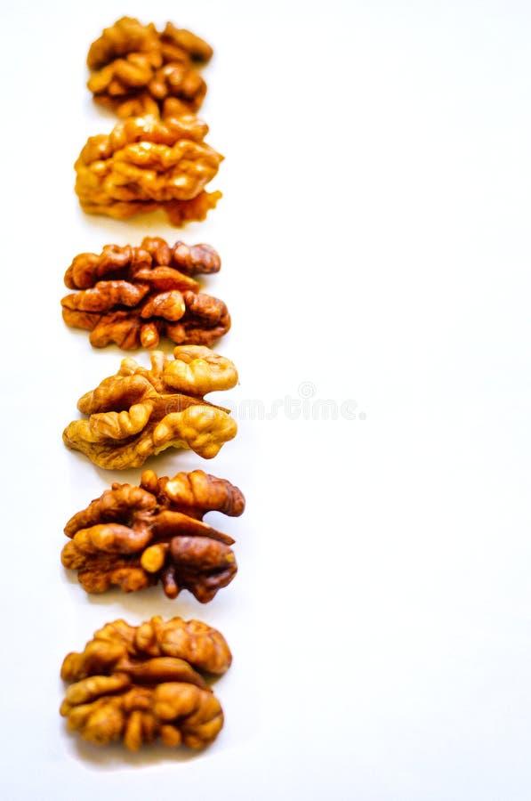Zakończenie orzechów włoskich nasiona wykładał w górę odosobnionego na białym tle fotografia stock