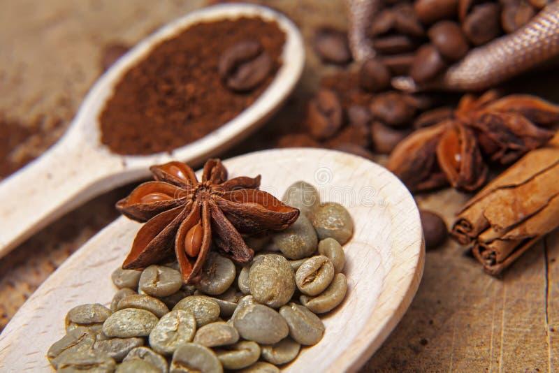 Zakończenie różni typ kawowe fasole na drewnianych łyżkach, zielonej kawie, kijach cynamon i anyżu, grają główna rolę, makro-, se obrazy royalty free