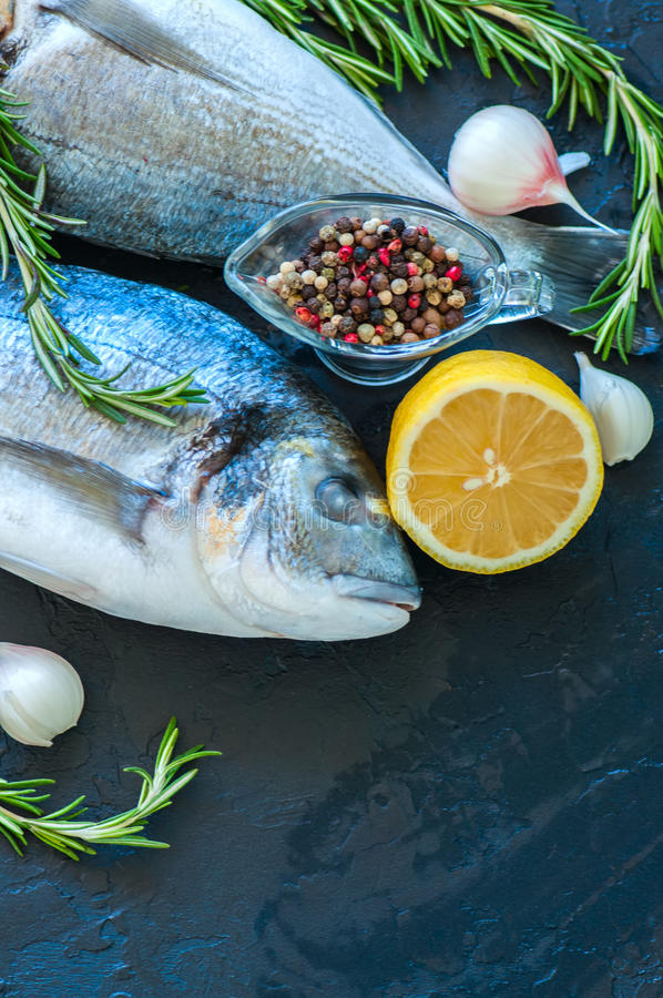 Zakończenie up świeża surowa dorado ryba, rozmarynowy zielarski czosnku pieprz a zdjęcia royalty free